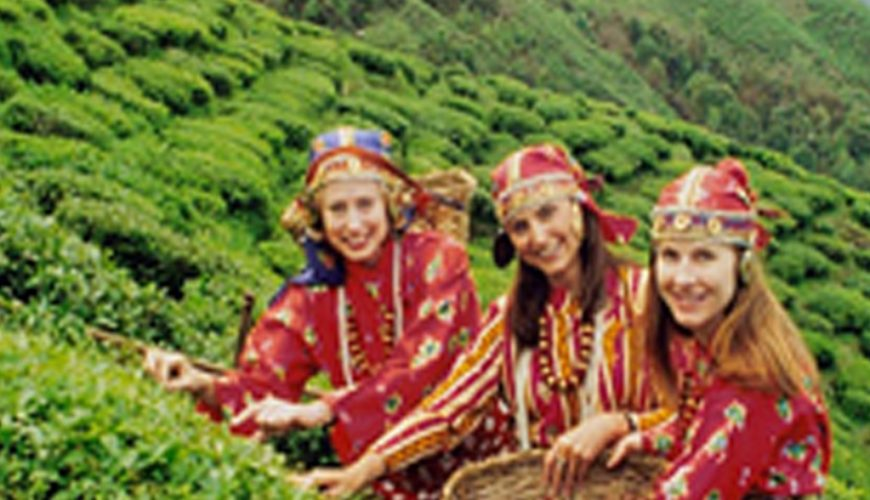 Sikkim Darjeeling Group Holiday Tour Travel Packages